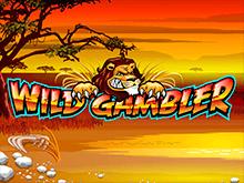 Игровой автомат Wild Gambler